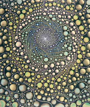 Barbara Takenaga - Paintings